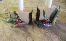 ua planters and fairy 061